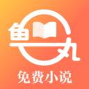 鱼丸免费小说